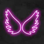 ailes neon led la maison du neon