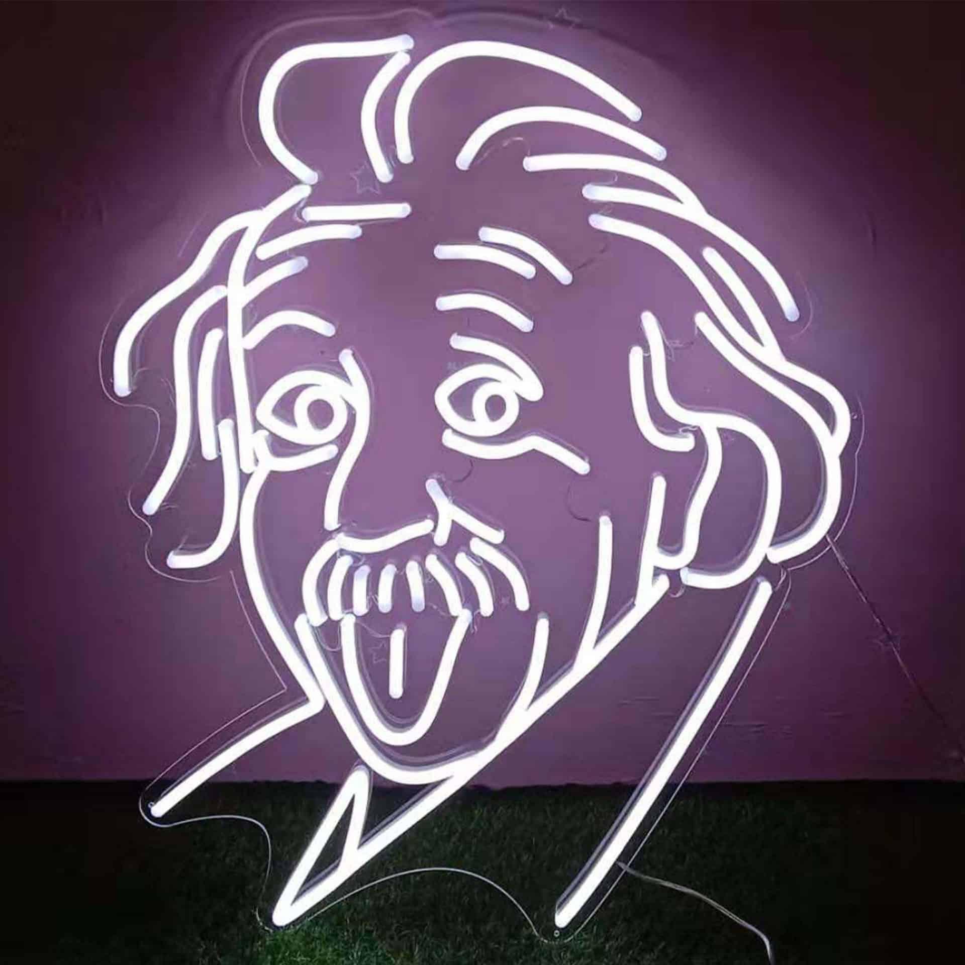 PORTRAIT Einstein neon blanc