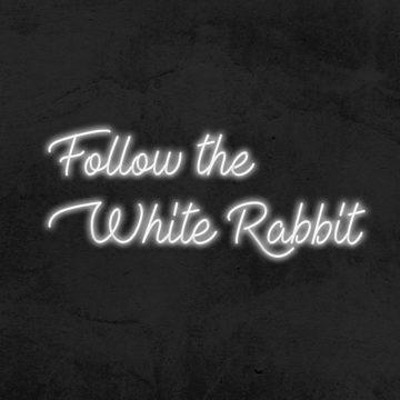 Néon follow the white rabbit