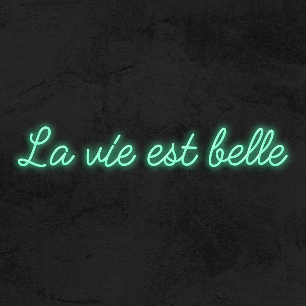 la vie est belle neon led la maison du neon